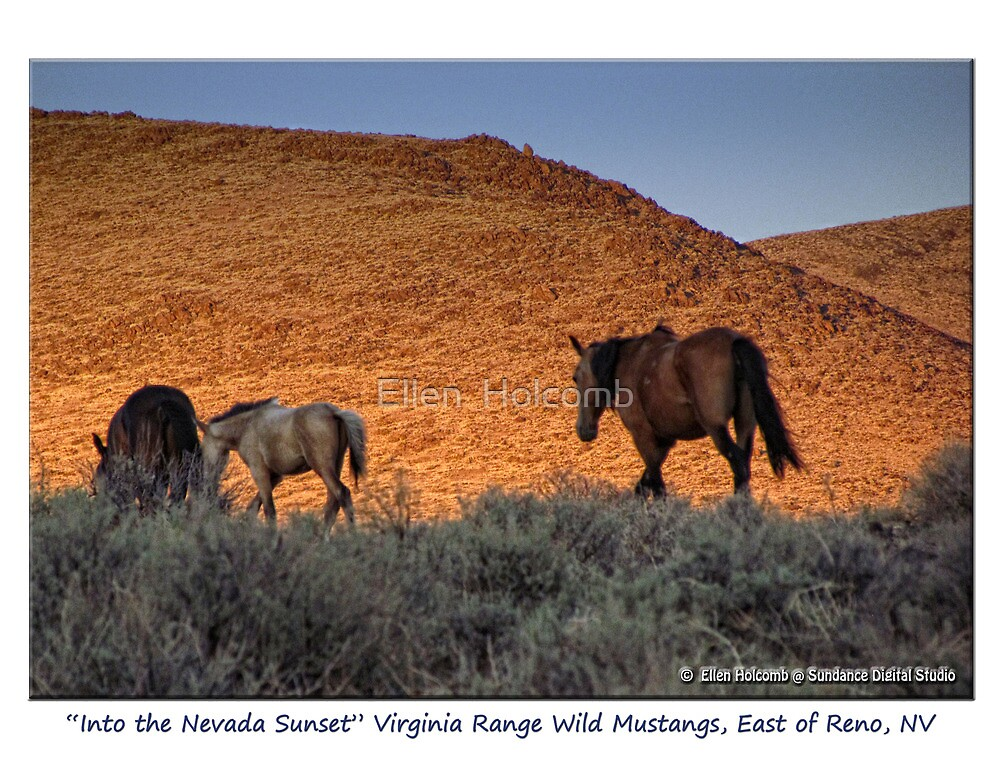 """""""Into the Nevada Sunset"""" small band of Virginia Range, Nevada by Ellen  Holcomb"""
