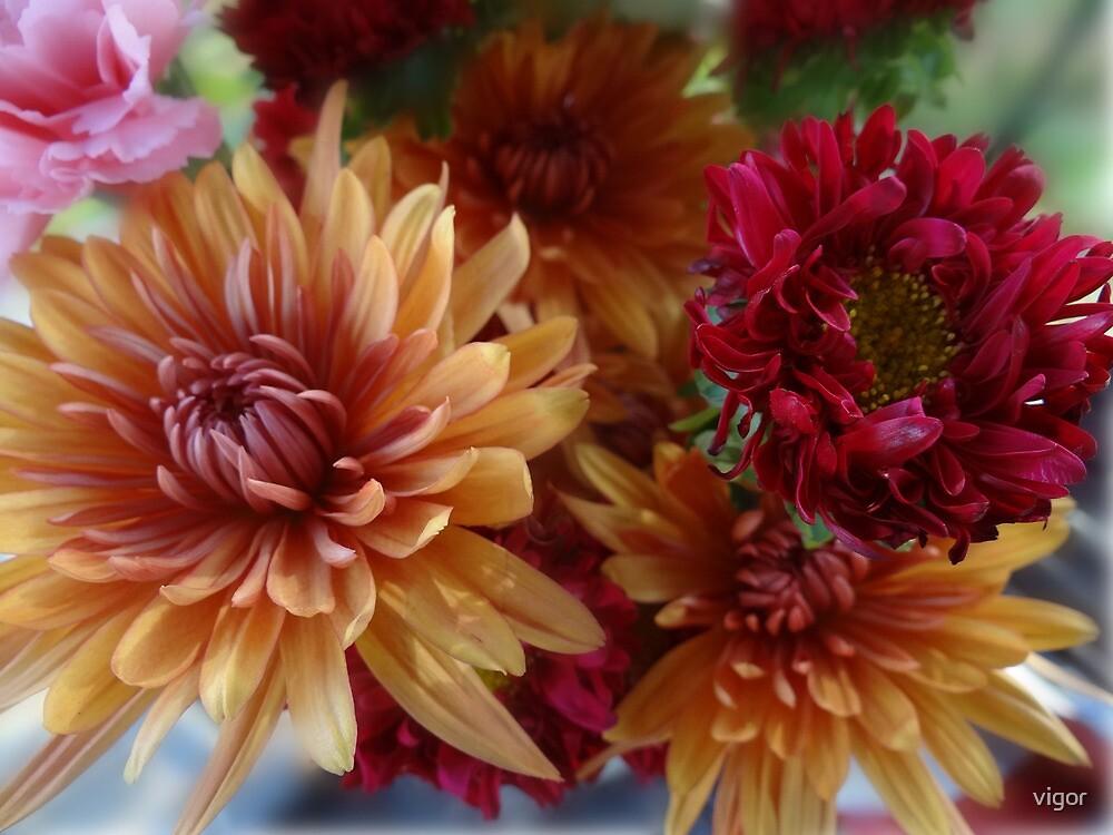 Bouquet Flowers 1 by vigor