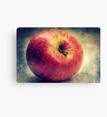 Apple Mac-Ro Canvas Print