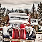Old Trucks in HDR#9 by peaceofthenorth