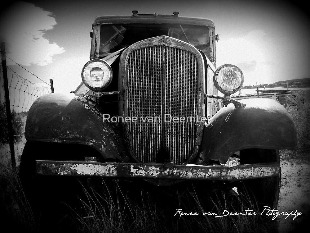 Abandoned by Ronee van Deemter