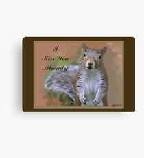 Missing You Squirrel Canvas Print