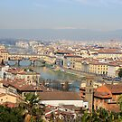 Florence from above  by sylvianik