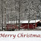 Merry Christmas Card by Penny Fawver
