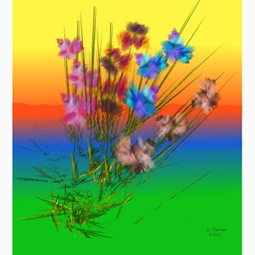 Patch Of Iris by CarmanTurner