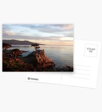 The Lone Cypress Postcards