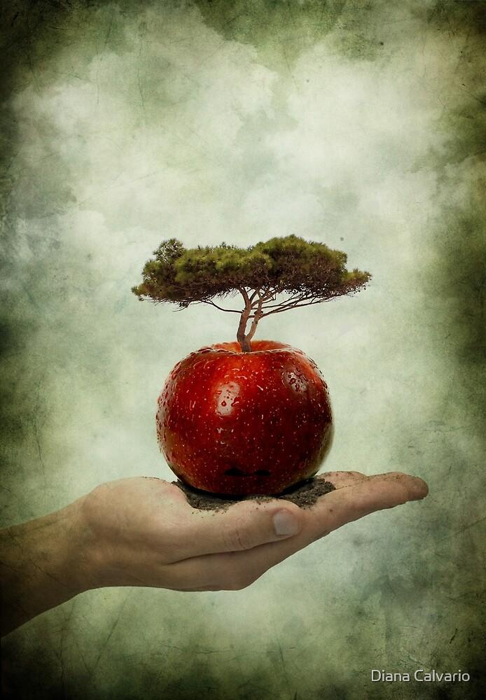 preserve by Diana Calvario