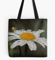 Daisy with dew drops Tote Bag