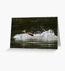 Splashdown!   Greeting Card