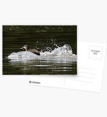 Splashdown!   Postcards