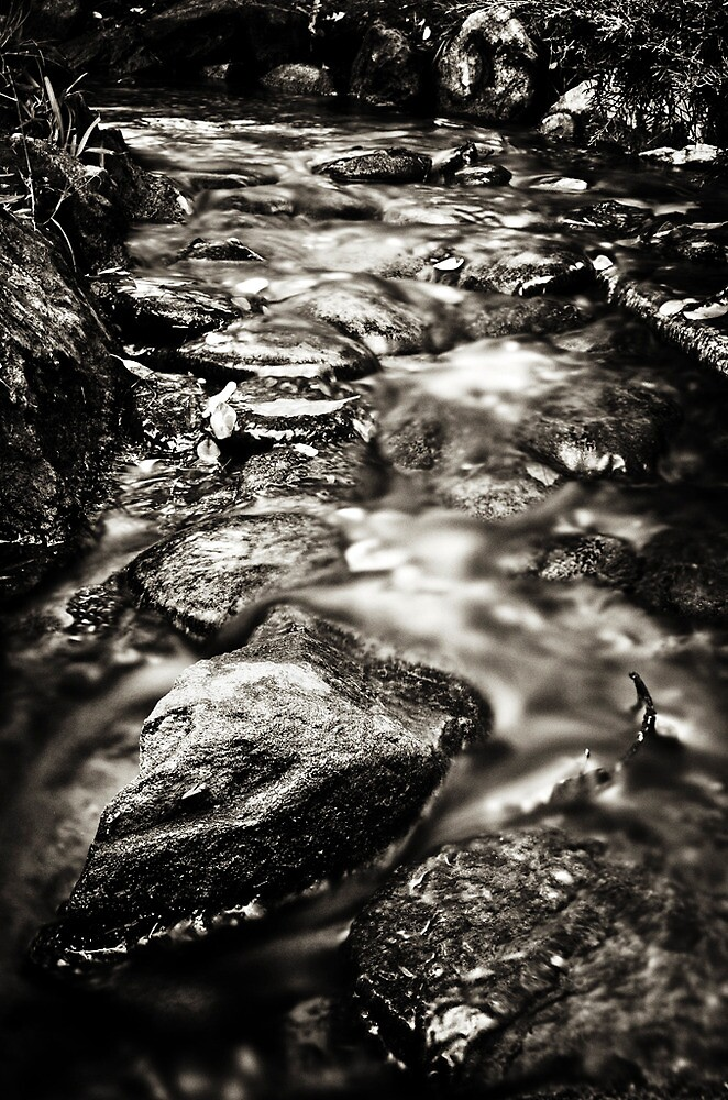 Running Water by Arkadiy Chernov