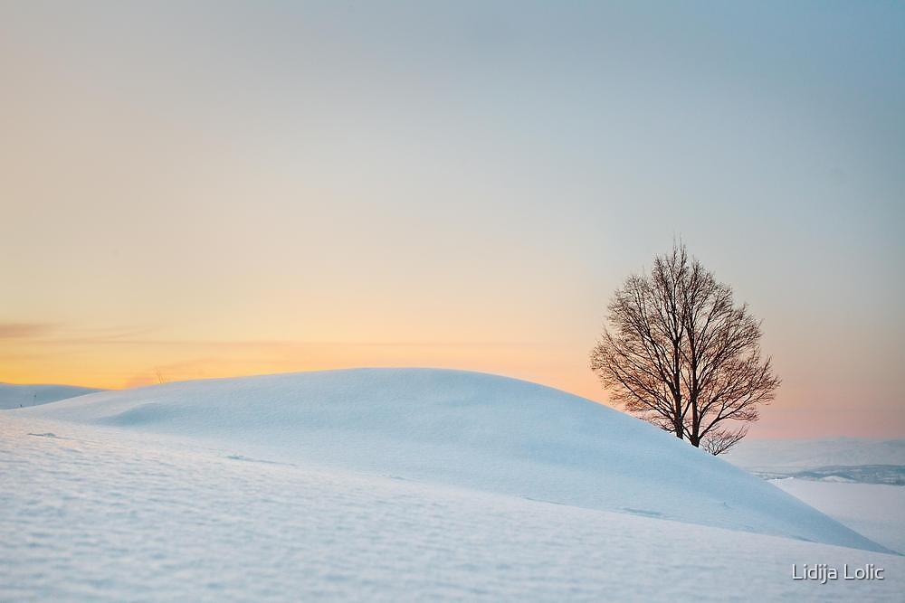 Winter pastel by Lidija Lolic