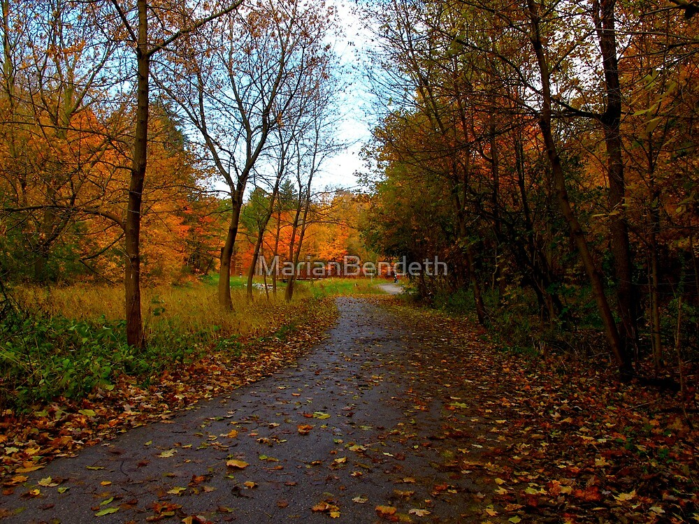 Paths unknown by MarianBendeth