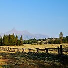 Wooden Fence and Pilot Peak  by pshootermike
