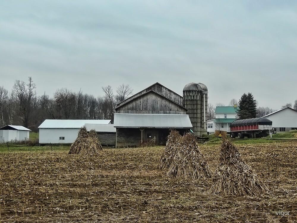 An Amish Farm by vigor