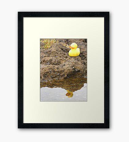 Duckscovering The Self (part one) Framed Print