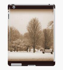 A Winter's Scene iPad Case/Skin