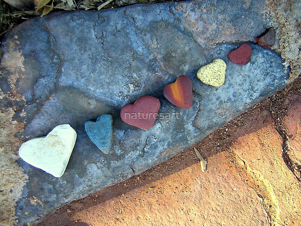7 love rocks - shaped by the river. by naturesart