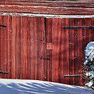 Old boathouse door by marina63