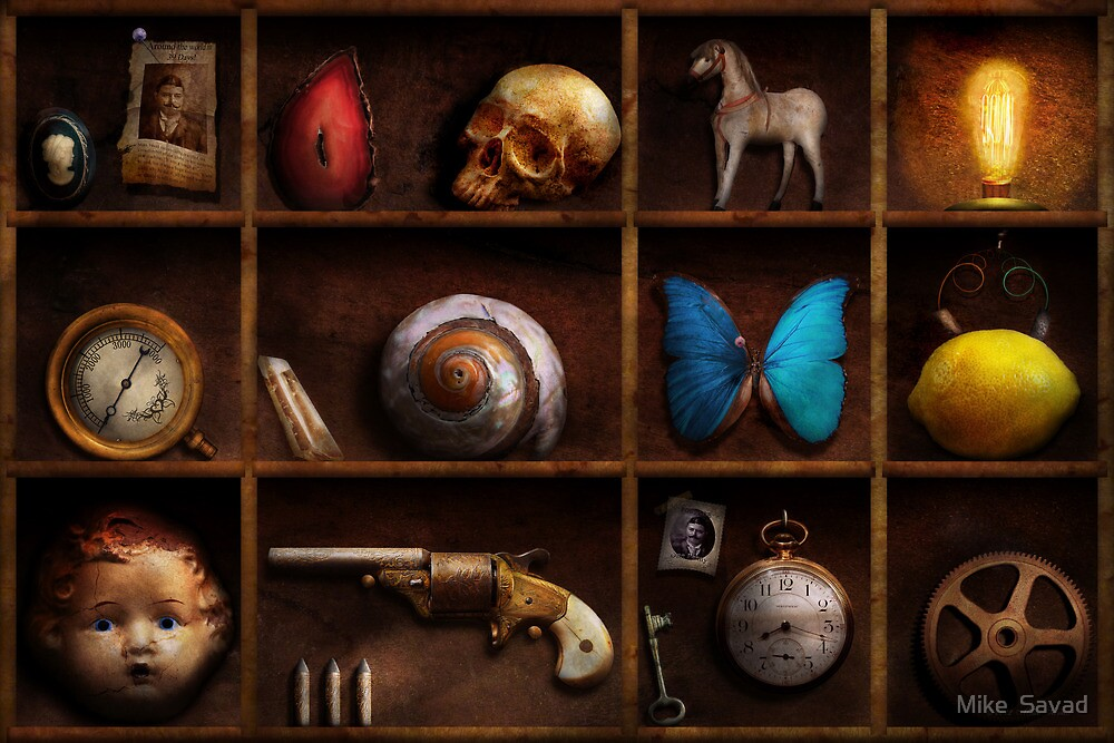 Steampunk - A box of curiosities by Michael Savad