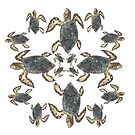 Turtle Pattern by samclaire