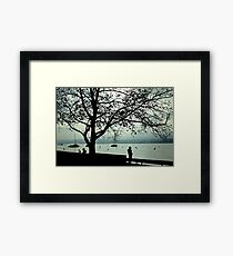Lake Zurich, Switzerland Framed Print