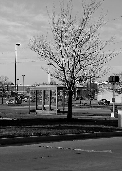 Empty Bus Stop by Nevermind the Camera Photography
