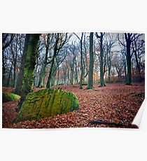 Chevin Forest Park #1 Poster