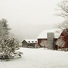 First snow of 2012  by Penny Fawver