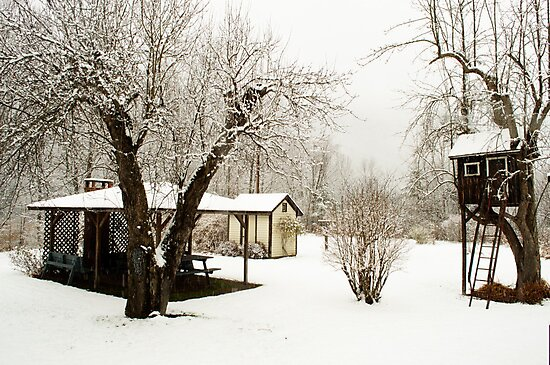 pavillion, tree house, and outhouse by Penny Rinker