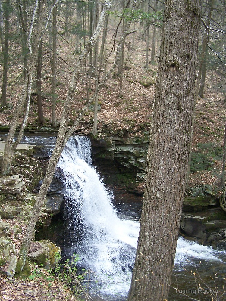 waterfalls by Tammy Rooker