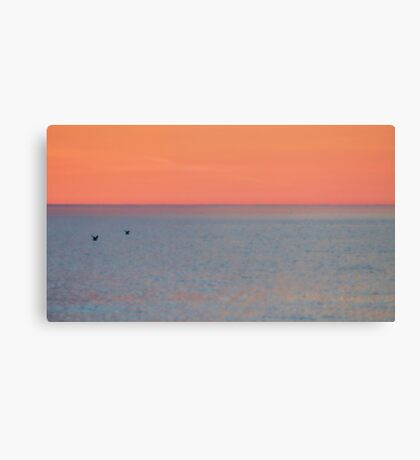 Abstract sunset with two seagulls Canvas Print
