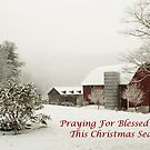 Blessed Peace Christmas Card by Penny Fawver