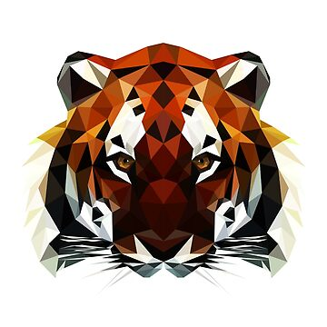 Geometric Tiger by arianazhang