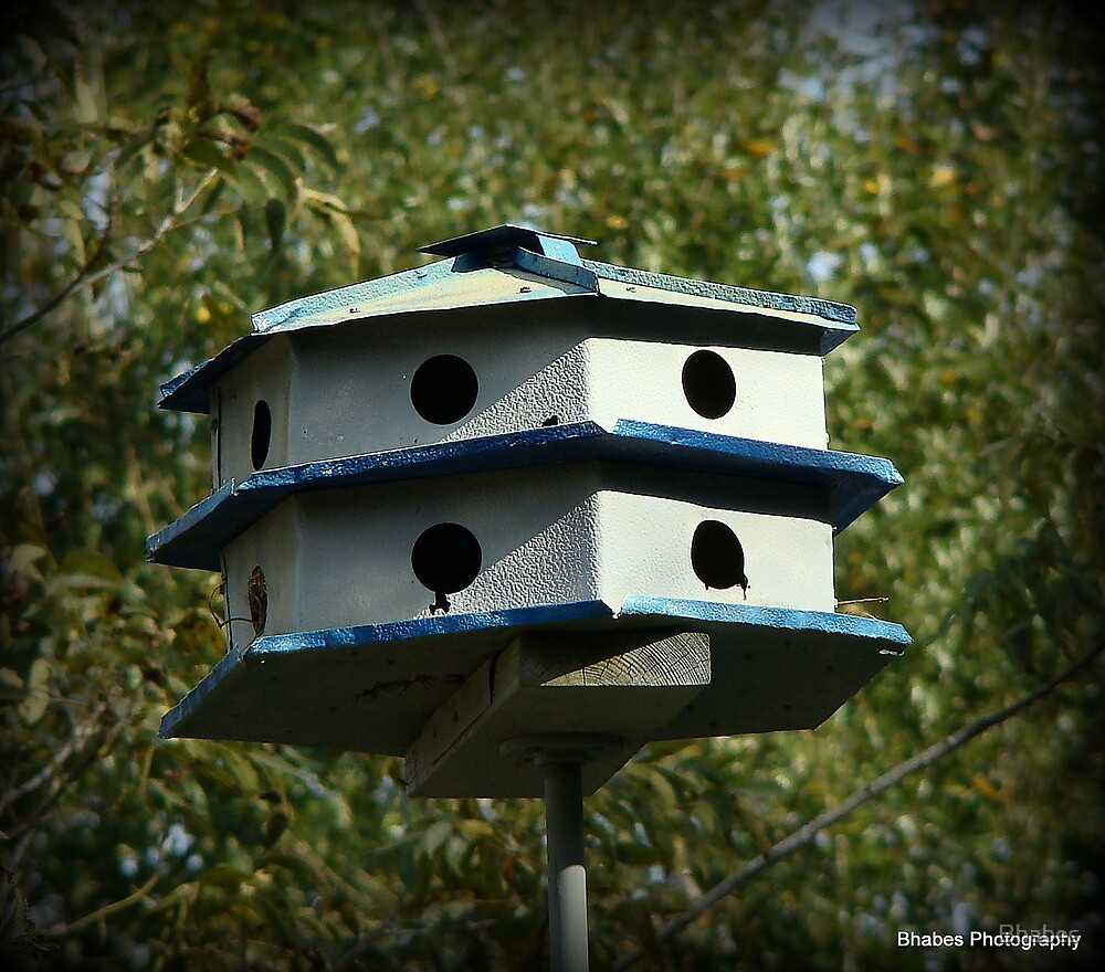 Birds house by Bhabes