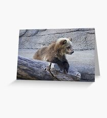 Grizzly Cub Greeting Card
