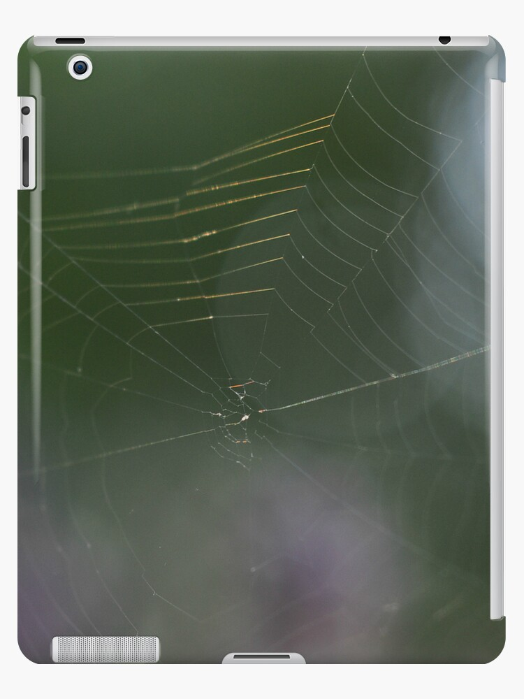 String theory~ iPad case by Jeananne  Martin