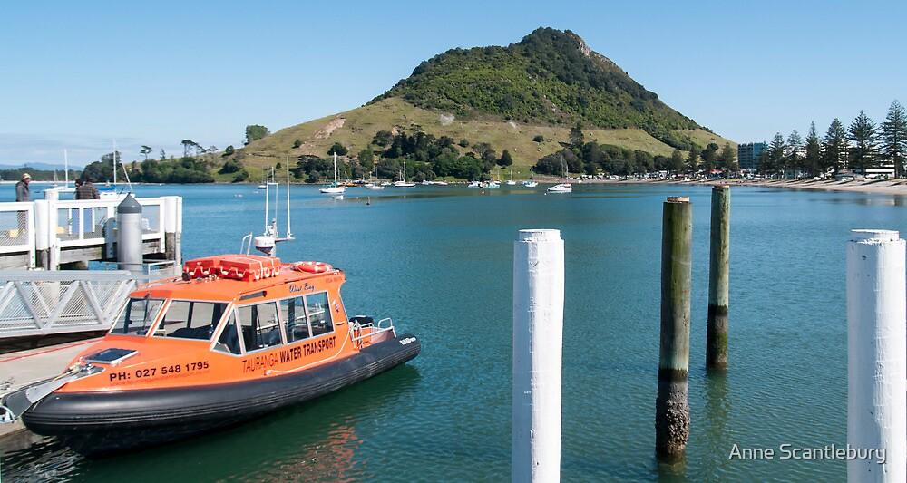 Orange boat by Anne Scantlebury