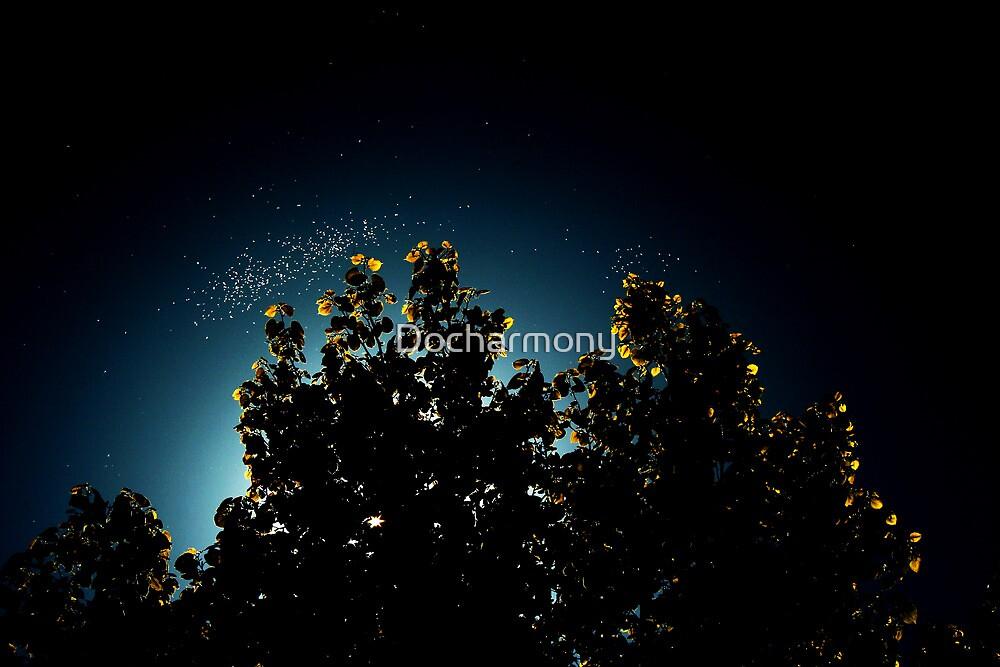Mystic Blue by Docharmony