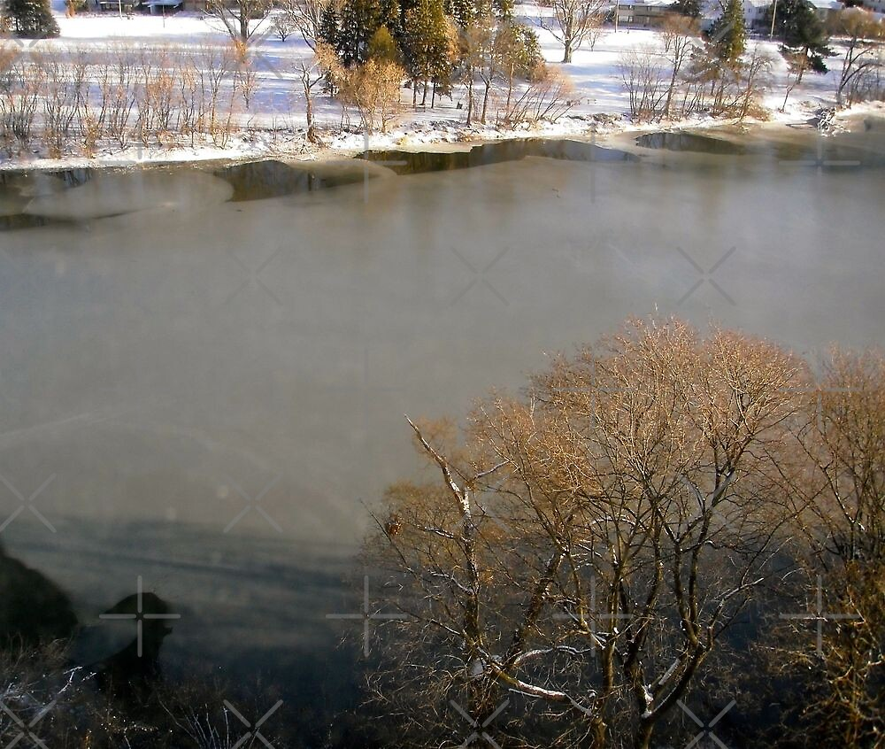Ice forming on the Rideau River, Ottawa, ON by Shulie1