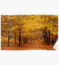 A golden autumn day Poster