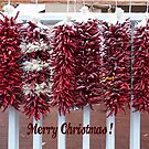 Chilli Christmas by Tracy Riddell