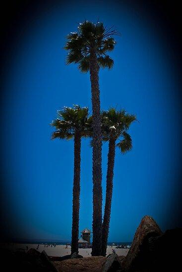 Coronado Giants by Adam Kuehl