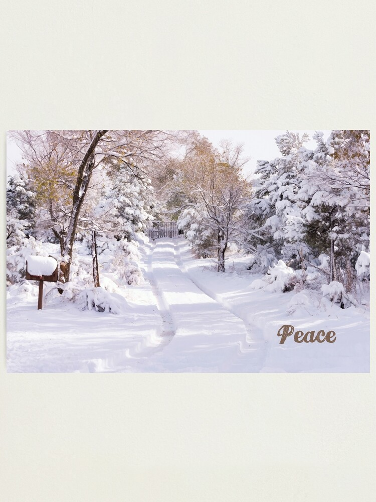 Alternate view of Peaceful Wonderland Photographic Print
