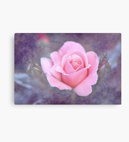 Young Romance Canvas Print