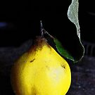 Quince by RobertCharles