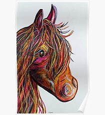 A Stick Horse Named Amber Poster