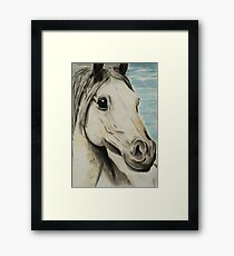 Tinted charcoal horse Framed Print