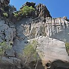 Rock Wall, Geikie Gorge, Kimberley, Western Australia by Margaret  Hyde