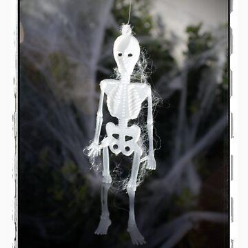 Skeleton by jwzook